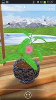 Screenshot of 3D Mimosa Live Wallpaper Free