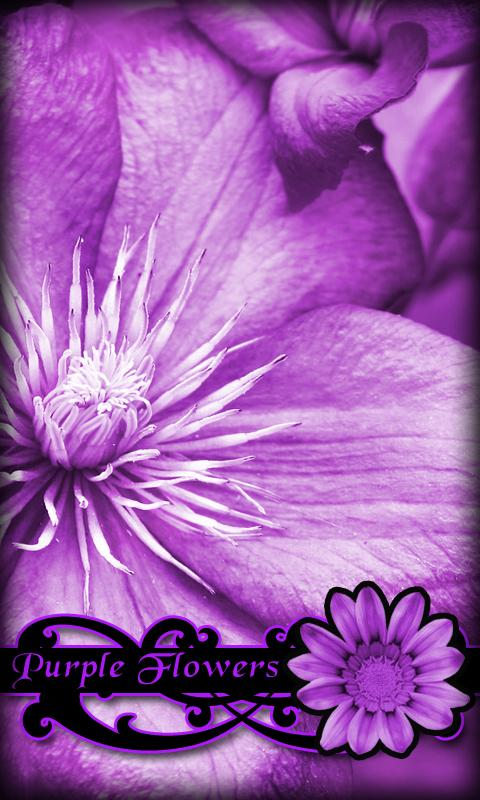 Purple Flowers Live Wallpaper- screenshot