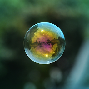 Bubble on a green background by Peter Murnieks - Artistic Objects Other Objects ( bubble, color, green, floating, bubbles, air, yellow, float,  )