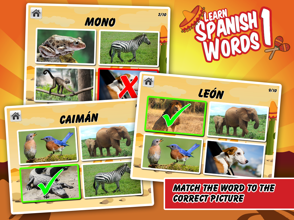 Learn Spanish Words 1- screenshot