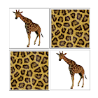 Memorize! Zoo icon