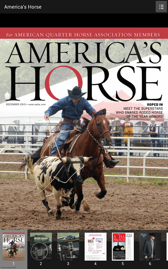 America's Horse- screenshot