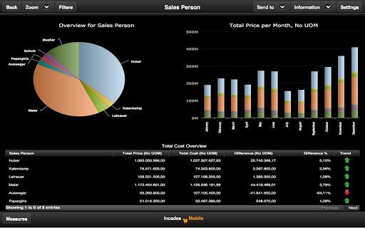 incadea Business Analytics