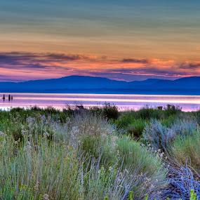 Mono Lake by Jim Kuhn - Landscapes Mountains & Hills