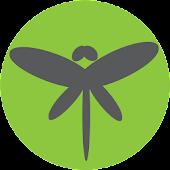 Dragonfly CM12 Full Version