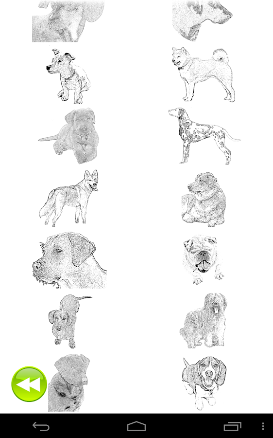 Dog Coloring Book- screenshot