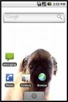 Screenshot of Android Pet