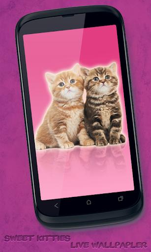 Sweet Kitties Live Wallpaper