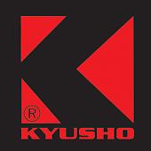 Kyusho Healing