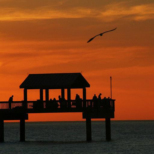 Clearwater - Florida LOGO-APP點子