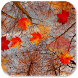 Autumn Maple Live Wallpaper ★ icon