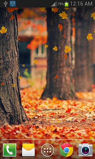 Maple Leaf Live Wallpaper FREE