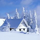 Snow Landscape LWP