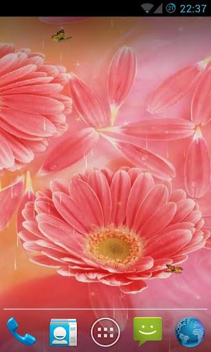 Flower Live Wallpaper HD