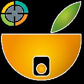 OrangeCam Viewer