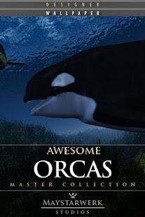 逆戟鯨免費壁紙