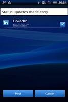 Screenshot of LinkedIn Timescape™