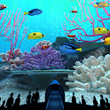 Coral Reefs World Trial icon