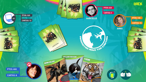 Animal Cards