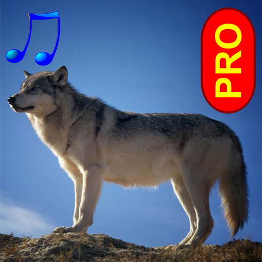 Animal sounds and photos PRO