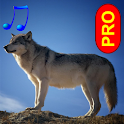 Animal sounds and photos PRO icon