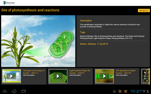 Photosynthesis reactions