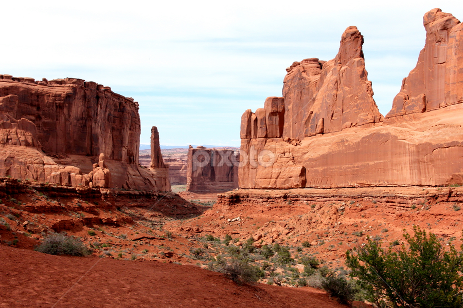 The Avenue by Dennis Robertson - Landscapes Deserts ( red rock, sand stone,  )