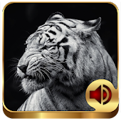 Animal Ringtones 200