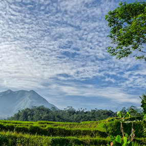 Lovely cotton sky by Donnie Beat - Landscapes Mountains & Hills