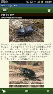 世界のカブト・クワガタ図鑑- screenshot thumbnail