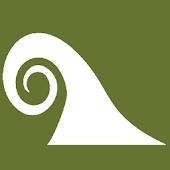 Surf Alarm