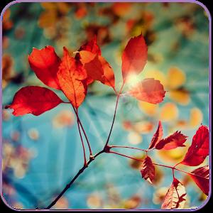 Galaxy S4 Leaf Live Wallpaper