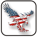 American Eagle doo-dad icon