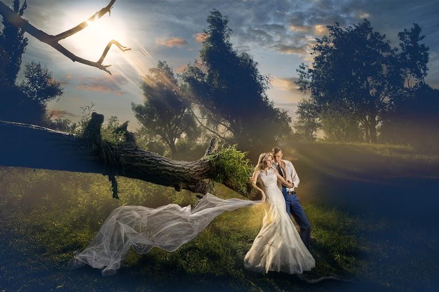 summer evening by Dmitry Usanin - Wedding Bride ( love, bridal, usanin, wedding, art, romantic )
