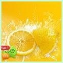 Lemon [Go SMS Theme] icon