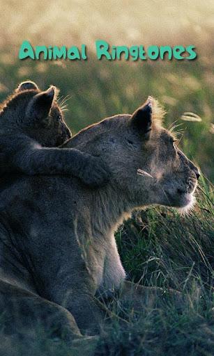 Animal Ringtones