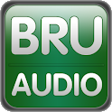 Brussels Audio guide (English) logo