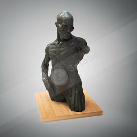 Male Clay Bust Human Muscle Sculpture