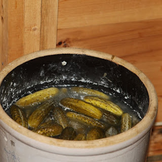 Wild Dill Pickles