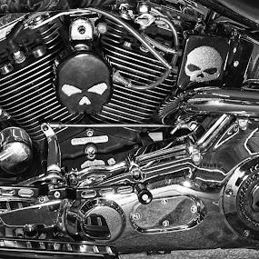 Skull Motor by Hans Watson - Transportation Motorcycles