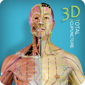 Advanced Acupuncture 3D