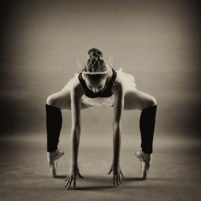 Ballerina by Ivelin Zhelyazkov - Black & White Portraits & People ( thumbs, балет, студио, момиче, light modifier, ballerina, portrait, танц, жена, photo studio, girl, палци, softbox, woman, балерина, портрет, ballet, dance )