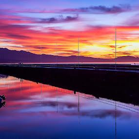 Morning stroll... by Brandon Chapman - Landscapes Sunsets & Sunrises (  )