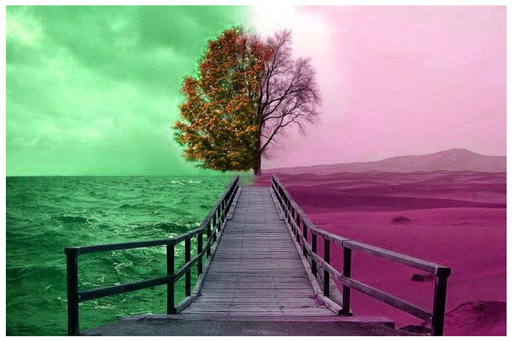 Color Photo Effect