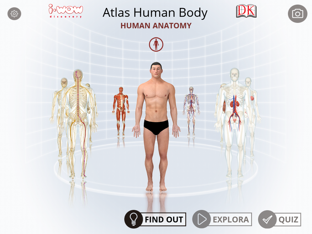 Human Body Atlas Medical Vision