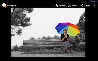 Screenshot of PicSay Pro - Photo Editor