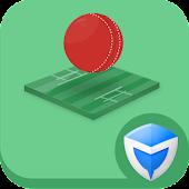 AppLock Theme - Cricket
