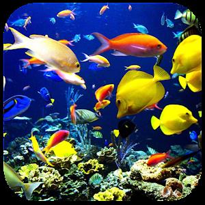 3D Underwater World 教育 App LOGO-APP試玩
