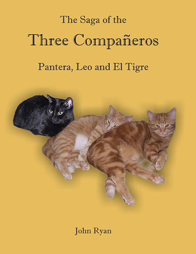 The Saga of the Three Compañeros  Pantera, Leo and El Tigre cover