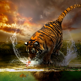 Predators by Juprinaldi Photoart  - Digital Art Animals ( tiger         fish            water        sky           photomanipulation         digitalart )
